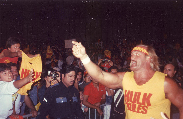 Hulk Hogan: A good guy in WWF, bad guy in WCW... An entertaining wally in 'Hogan Knows Best.'