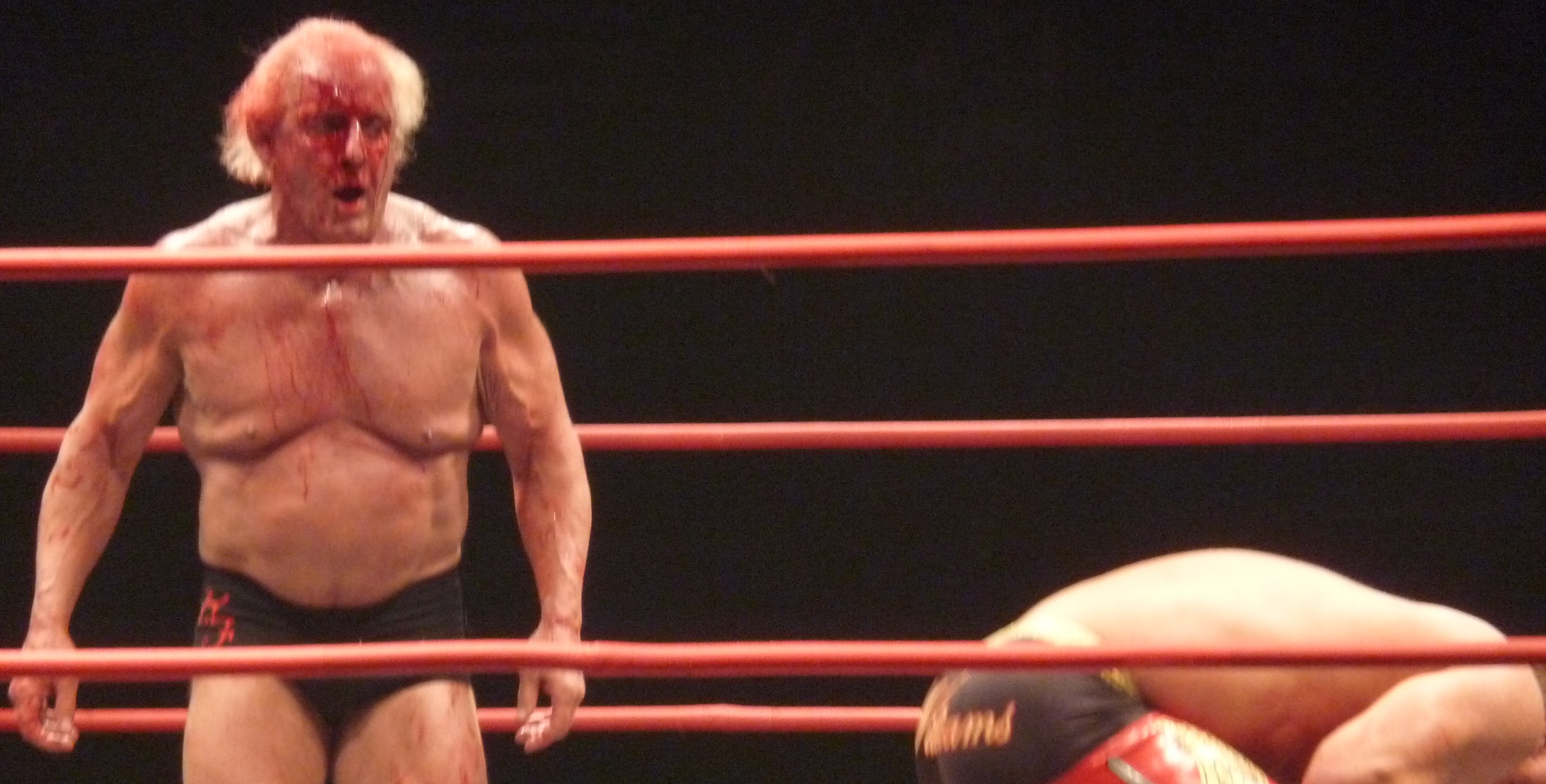 Woooo: Flair's once chiselled physique now looks a little flappy.